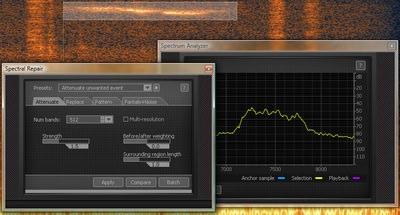 RX-spectral-repair.jpg