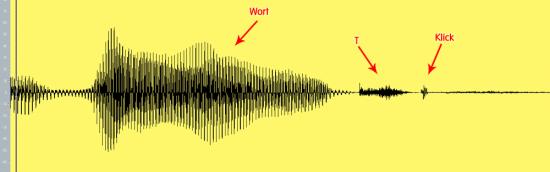 Konsonanten erhalten beim Bearbeiten von Gesang
