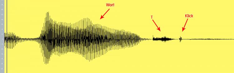 Gesang bearbeiten - Konsonanten erhalten