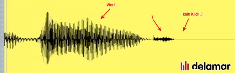 Gesang bearbeiten - Störgeräusche entfernen