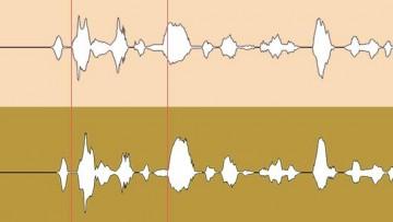 Einsätze bei den Backing Vocals / Background Vocals