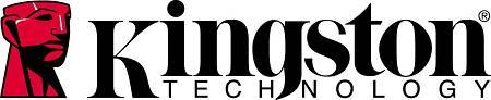 Kingston Logo - delamar Audio Computer