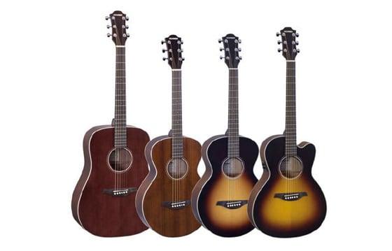 Hohner Akustikgitarre & Westerngitarre S0, S100 & MD