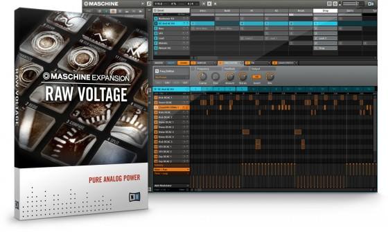 Native Instruments Raw Voltage