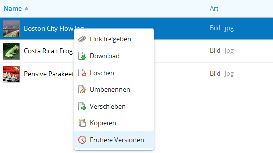 Dropbox - Versionierung