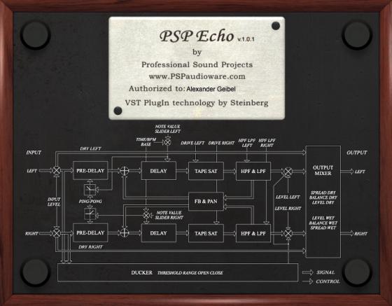 PSP Echo Testbericht