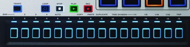 M-Audio Trigger Finger Pro Test - Step-Sequenzer