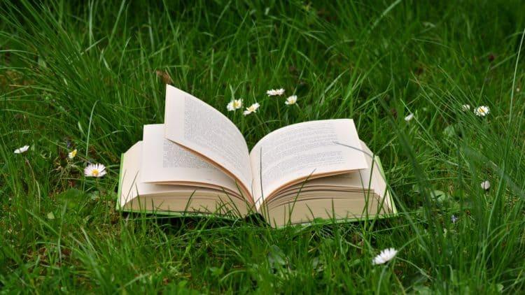 Bücher über Musik