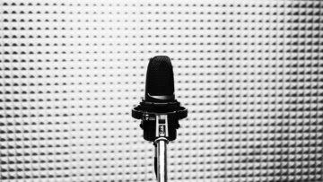 Die populärsten Vocal-Effekte