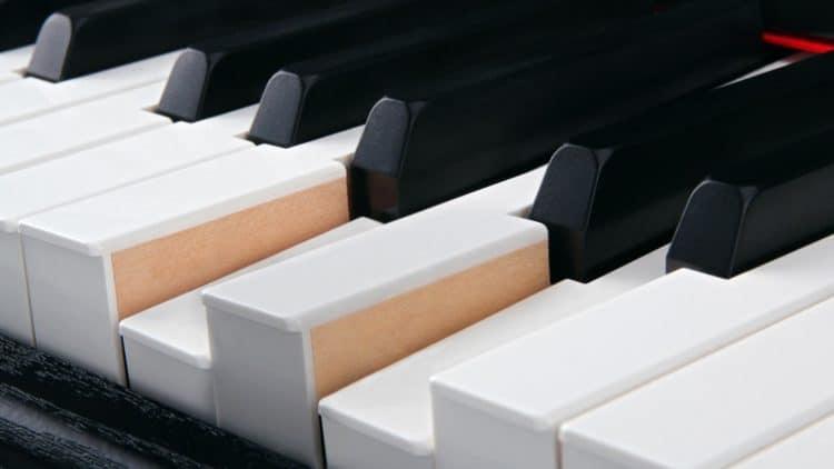 Tastatur - Steinmayer DP-360 Testbericht