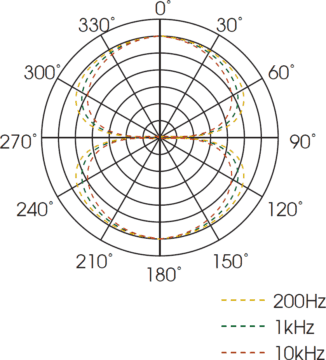 Royer R-10 Testbericht - Richtcharakterisik