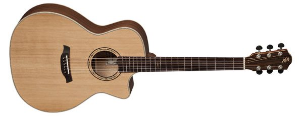 Akustikgitarre oder Konzertgitarre - Westerngitarre